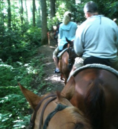 Smokemont Riding Stables: Along the trail with Carly and the family I rode with.