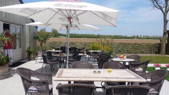 Scherpenisse, The Netherlands: Ons terras