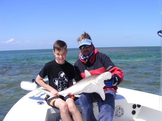Tarpon Time Fishing Charters : Shark fishing