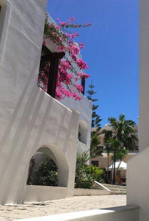 Veggera Hotel: Small and Friendly