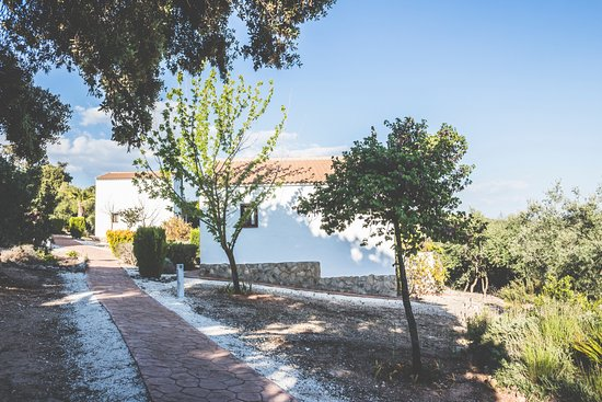 Estepa, Испания: Parte trasera de la casa con terraza
