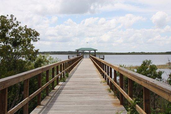 Kissimmee, FL: Twin Oaks