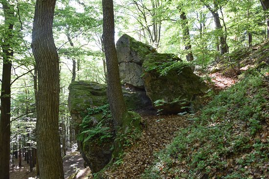 Kamien Michniowski nature reserve
