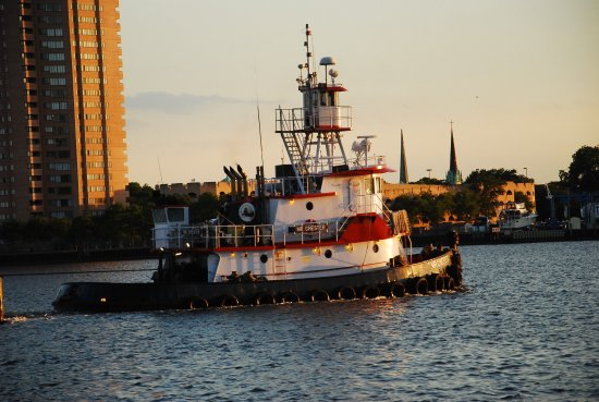 Renaissance Portsmouth-Norfolk Waterfront Hotel: Tugs are everywhere on the Elizabeth River