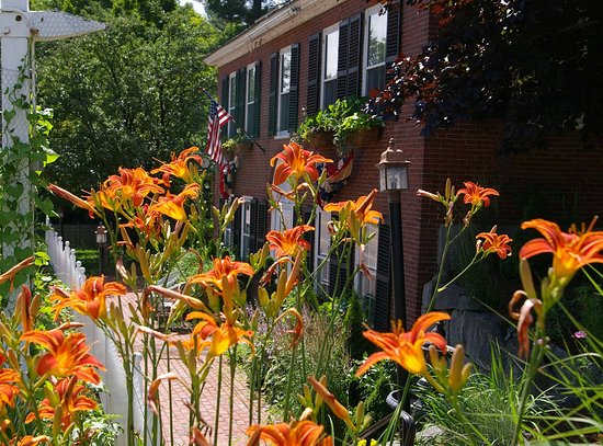 Plymouth, Nueva Hampshire: Federal House Inn - Tiger lillies.