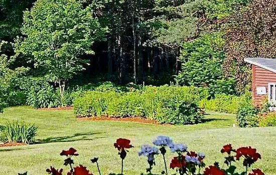 Plymouth, NH: Federal House Inn - Backyard garden view.