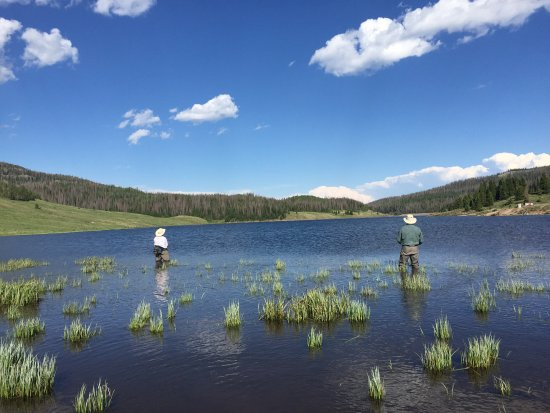 Velarde, นิวเม็กซิโก: Fishing a lake at 10,000 feet with dry flies!