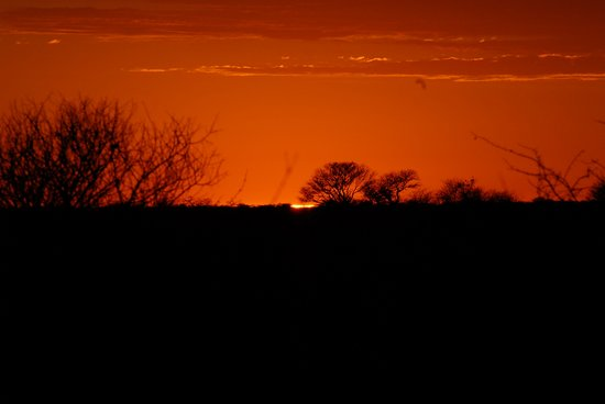Central Kalahari Game Reserve, Botswana: View from the campsite at sunset