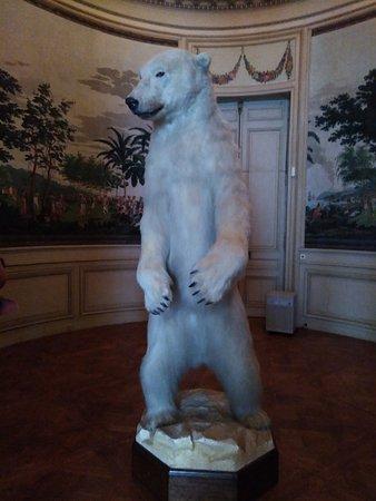 Musée Départemental Albert et Félicie Demard : ours empaillé