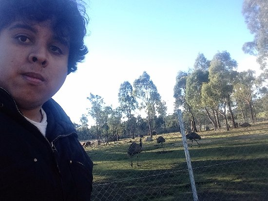 Riverside, Australia: me with emus and orchids