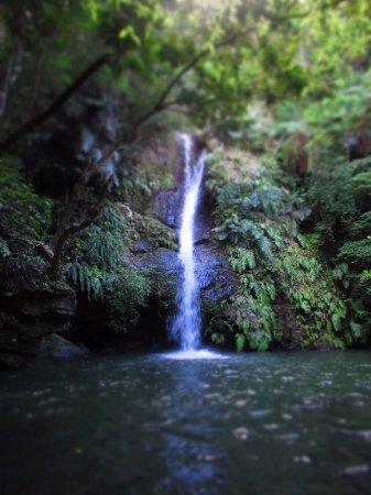 Fukugawa Falls