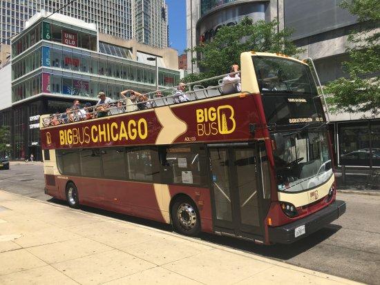 Chicago Hop On Hop Off Bus Tour Reviews