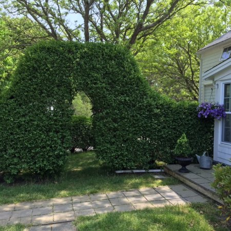 Brewster, MA: Private hedge to a large over sized granite picnic table.