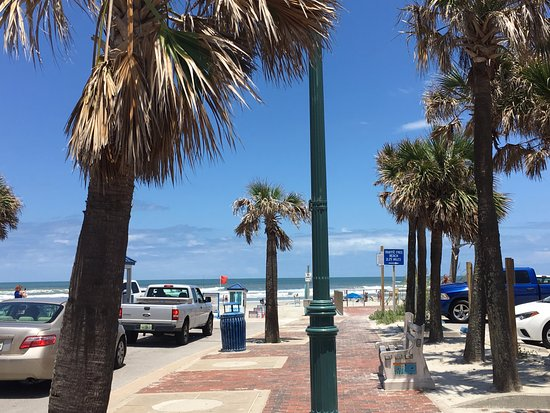 Things To Do In New Smyrna Beach Fl This Weekend