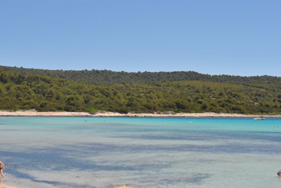 Dugi Island, Croazia: Sakarun beach