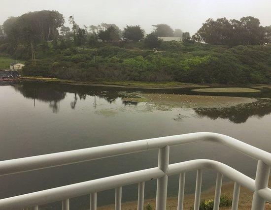 Beach House Inn: View from balcony