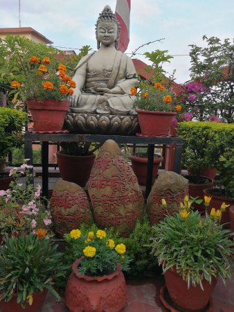 Hotel Tibet: Top terrace of hotel, chilling with Budha