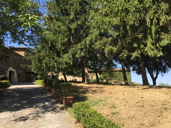 Радда-ин-Кьянти, Италия: photo9.jpg