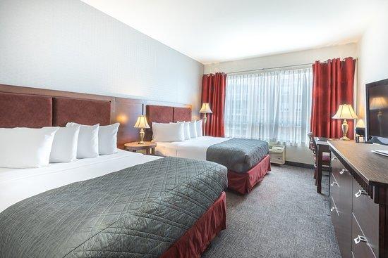 호텔 유니버셀 사진