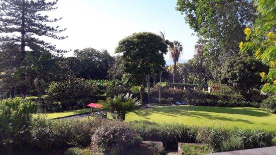 Quinta da Casa Branca照片