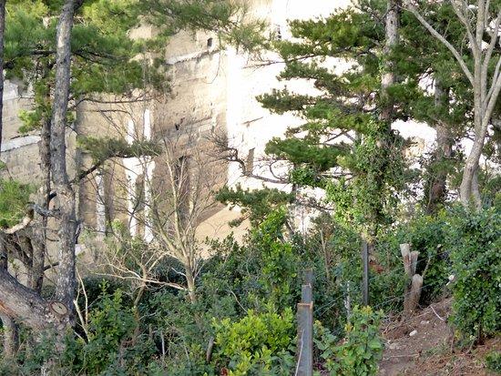 Vue du théâtre Antique d'Orange du haut de la colline