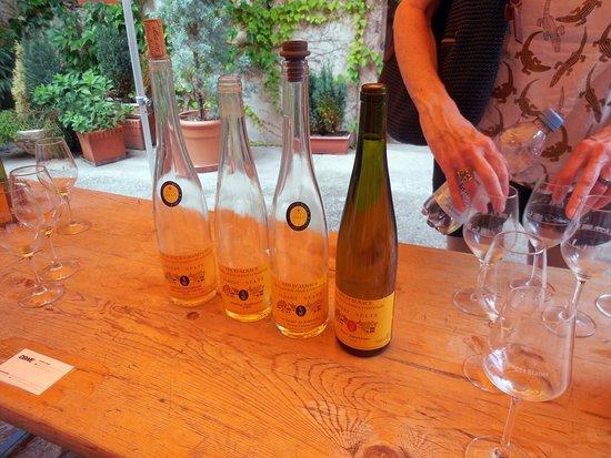 Mittelbergheim, فرنسا: The wines.