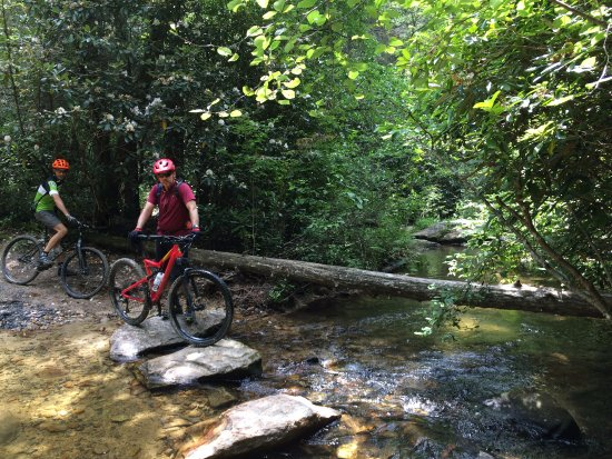 Pisgah Mountain Bike Adventures - Day Tours: Creek crossing