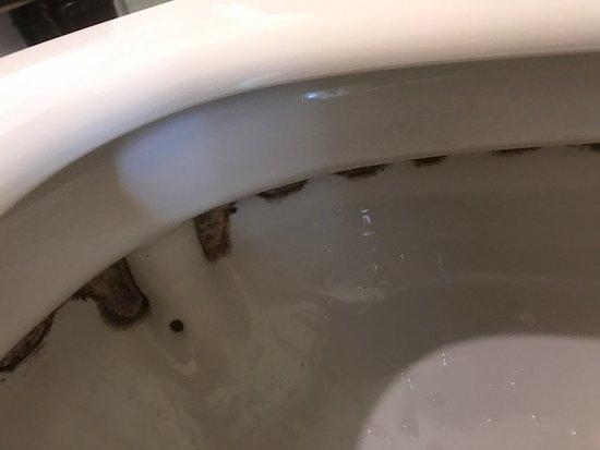The Graham Georgetown : la brosse des toilettes n'est pas passée par là depuis des années!