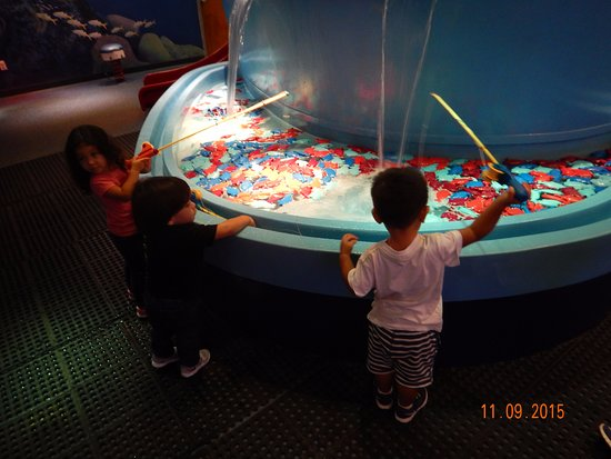 Miami Children's Museum : Pescaria