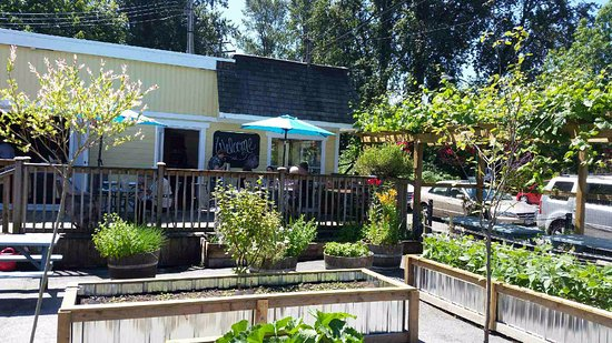 Orto Artisan Pasta: Amazing Vegetable Garden And Patio