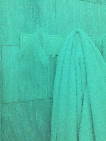 Zenith Blue: photo1.jpg