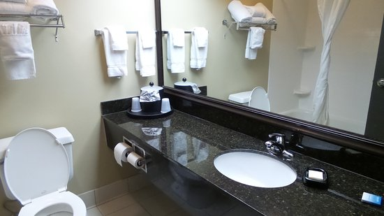 Best Western Plus Mishawaka Inn: Clean and modern bathroom