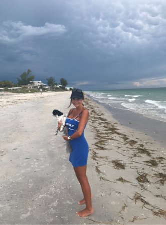 Manasota Key, FL: No crowds on these beaches🐶🌊🏝