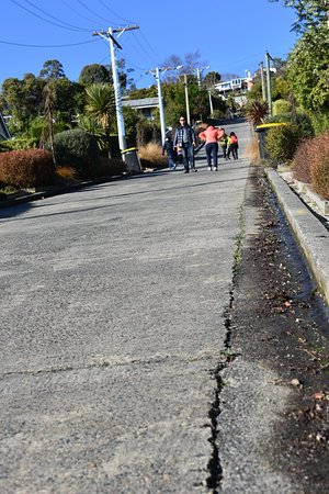 Baldwin Street Dunedin New Zealand Top Tips Before You Go Tripadvisor
