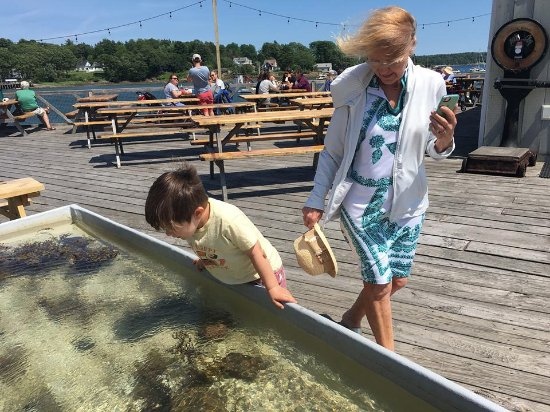 Round Pond, ME: The tide pool - perfect to amuse the kids while you wait