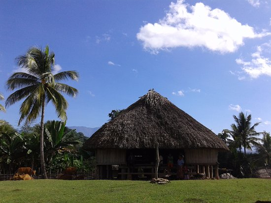 Dili, Østtimor: Traditional Mambae house in Hatudo on the Southwest coast