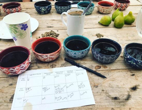 Holualoa, Hawaï: Cupping Kona coffee at Sunshower Farms