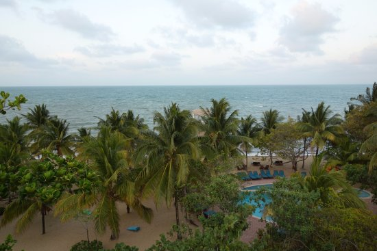Hamanasi Adventure and Dive Resort: View from above the restaurant