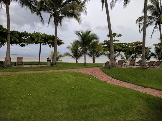 Doubletree Resort by Hilton, Central Pacific - Costa Rica: The beach is so dirty and murky. As you probably noticed why they don't have a SINGLE picture.