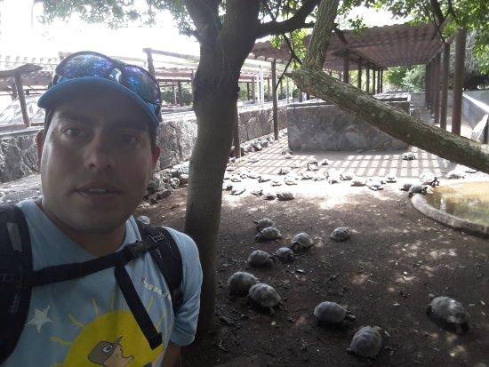 Puerto Villamil, Ecuador: 20170707_134757_large.jpg