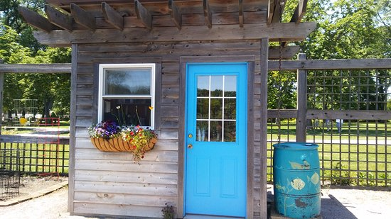 Pretty shed in the rose garden picture of cantigny park for Garden shed tripadvisor