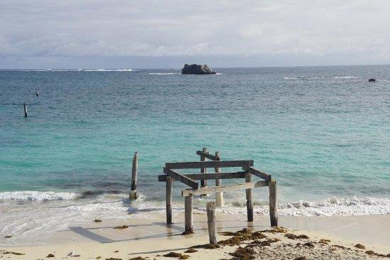 Hamelin Bay照片
