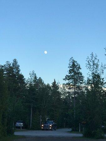 Mackinaw Mill Creek Campground Image