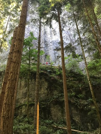 North Bend, WA: Little Si Trail 07082017