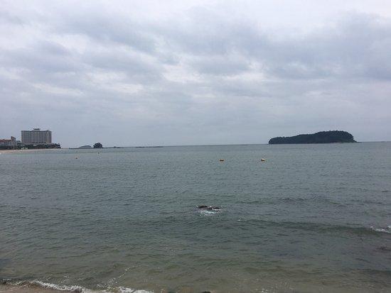 Muchangpo Beach照片
