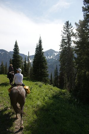 Alpine, WY: Amazing views of the mountains from horseback, nothin like it