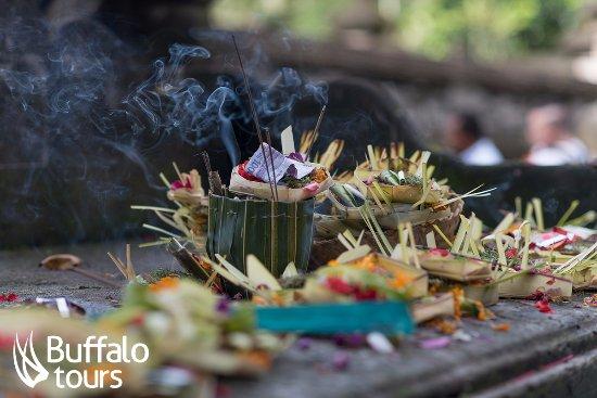 Buffalo Tours - Bali
