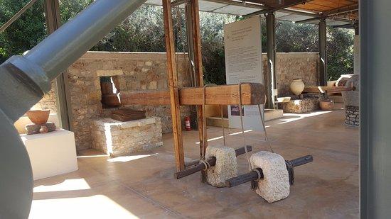 Musée de l'Olivier et de l'Huile Grecque : Museum of the Olive and Greek Olive Oil. Olive Press.