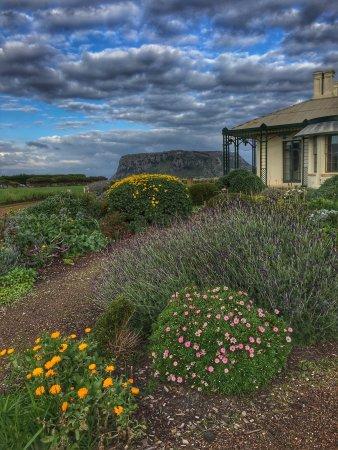 Stanley, Австралия: photo1.jpg