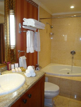 Terelj International Resort and Spa Hotel: Salle de bains suite